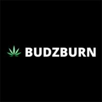 Budzburn